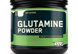 glutamine optimum nutrition