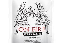 waxy maize sucre
